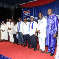 Meet The 10 Elected National Executives to Steer The Affairs of NPP