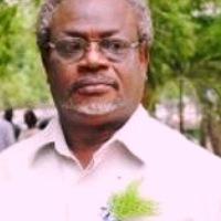 Ewes are Ripe; Dr. Akofa Segbefia writes...